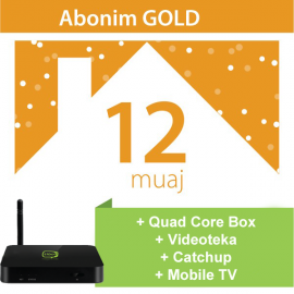Tibo Gold 12 Mujore + IPTV Quad Core Box + Mobile TV
